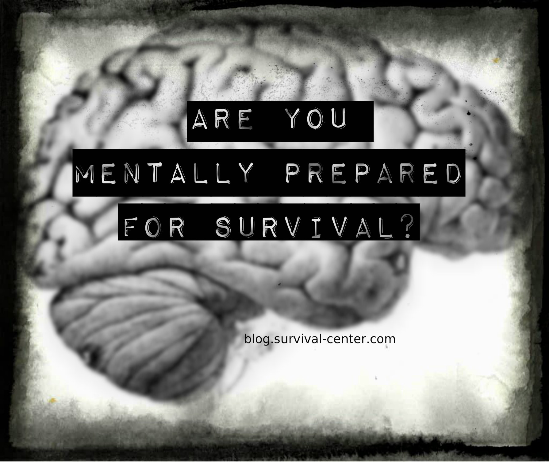 <h1>Do You Have a Survival Mindset?</h1>