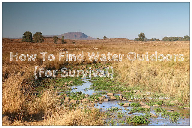 How To Find Water Outdoors For Survival