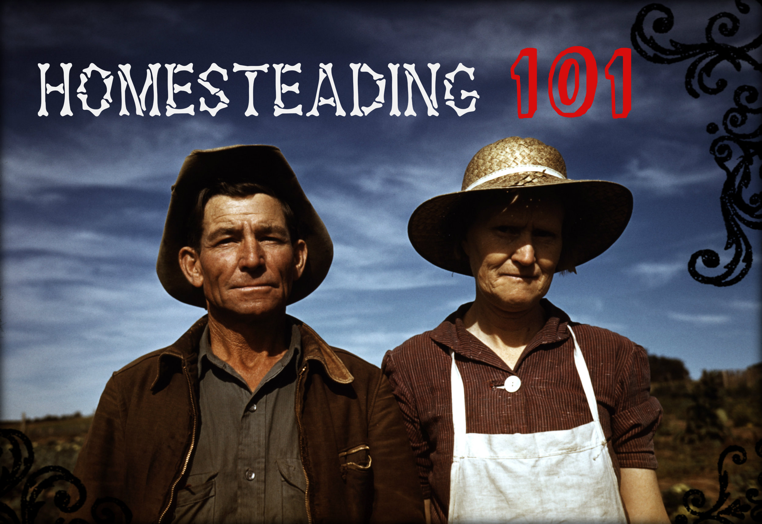 Homesteading 101