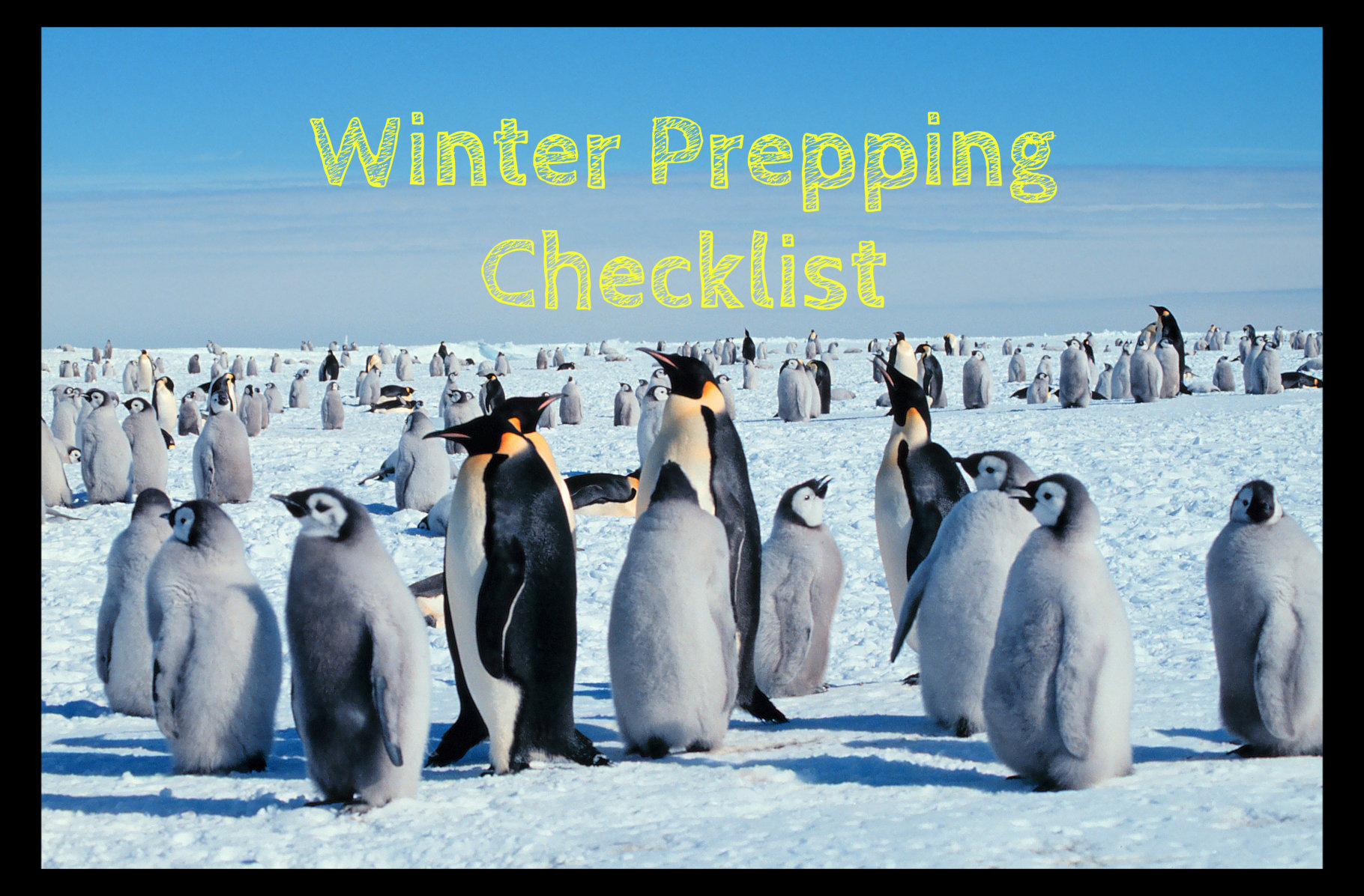 Top 5 Winter Preparedness Tips