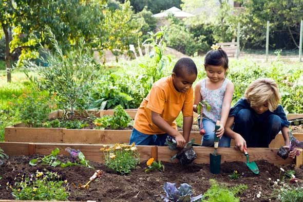 Kids Survival Garden