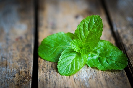 <h1>9 Amazing Survival Uses For Mint</h1>