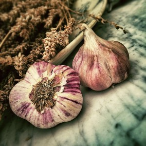 survival uses for garlic