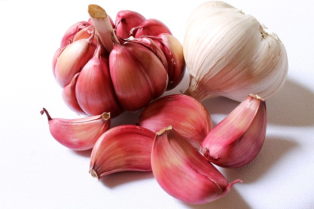 <h1>15 Incredible Survival Uses For Garlic</h1>