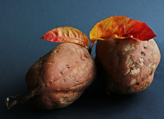 5 Reasons Sweet Potato Is a Perfect Survival Food