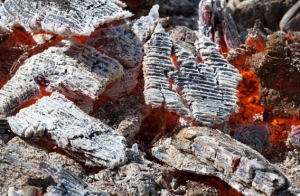 Cool Wood Ash Uses