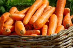 Survival Gardening With Carrots