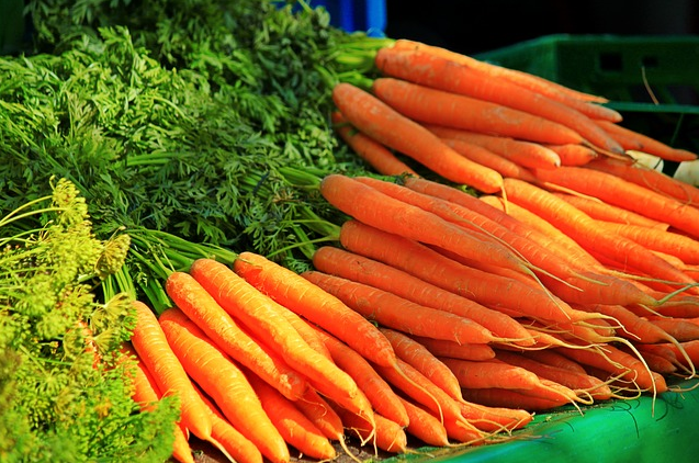 The Best Reasons To Begin Survival Gardening With Carrots