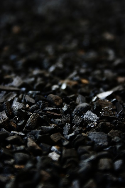 7 Survival Uses For Charcoal