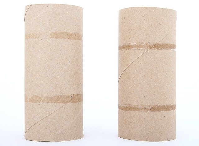 14 Amazing Survival Uses For Toilet Paper Rolls