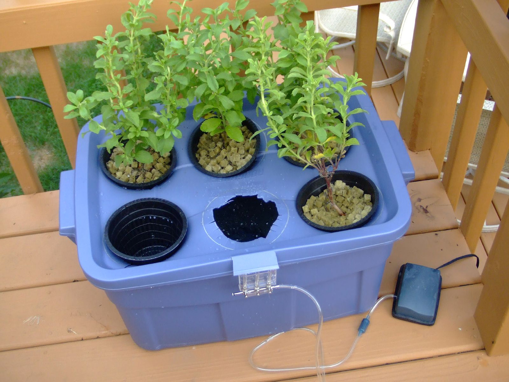 <h1>Create Your Own Secret Survival Garden Using a Hydroponic System</h1>